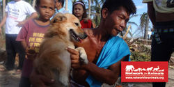 In the Aftermath of the Typhoon, Support Meaningful Aid for Animals