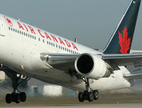 Thank Air Canada for Stopping Primate Transport to Research Labs