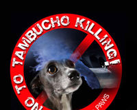 Tambucho Gassing is NOT Euthanasia