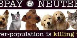 Urge Clark County officials to enforce the mandatory spay/neuter law and shut down the breeders !