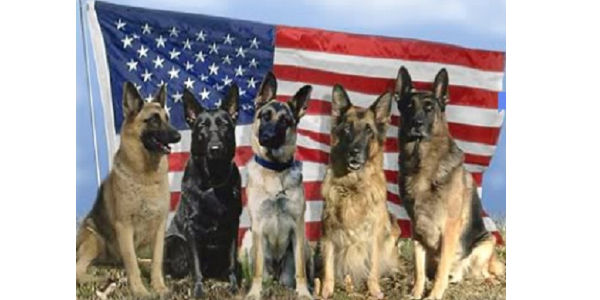 Urge that all military dogs retire on U.S. soil