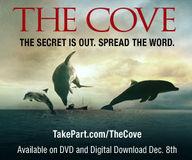 Signez la pétition contre la vente de viande de dauphin