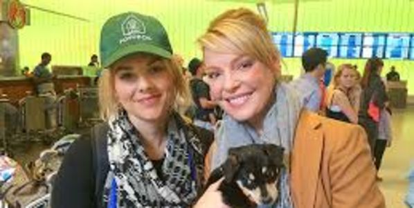 Send love to Ali Fedotowsky and Katherine Heigl for saving a Sochi's stray