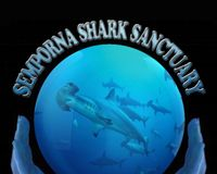 Support a Semporna Shark Sanctuary and the Future of Our Oceans!