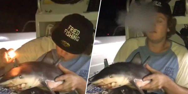 Man using baby shark as a bong