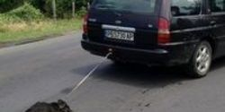 Demand Justice For Dog Dragged By Car