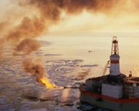 Tell Secretary Salazar: No Reckless Drilling in the Arctic