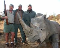 Stop Importing Endangered Rhino Trophies to the U.S.