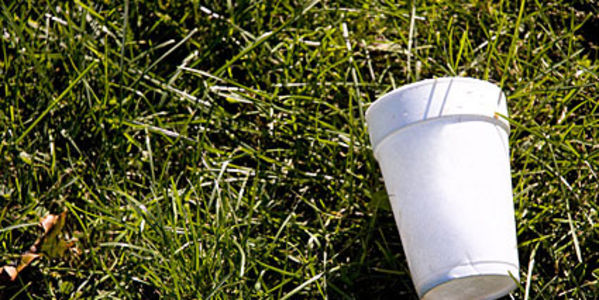 Ban usage of styrofoam food containers in Dallas