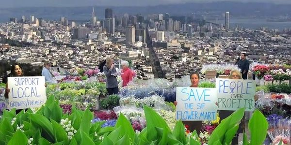 Save the San Francisco Flower Market