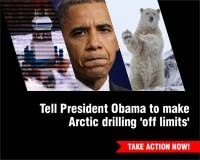 Tell President Obama to Make Arctic Drilling