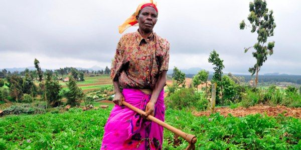 Stop the Corporate Takeover of Africa's Food