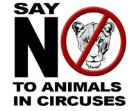 Thank Columbia for Banning Circus Animals
