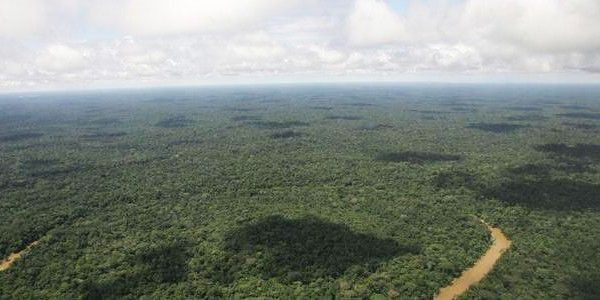 Help save the Amazon rainforest of Ecuador from oil companies