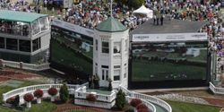 Ask For Investigation Into Mysterious Death of 5-year Old Racehorse At Churchill Downs!