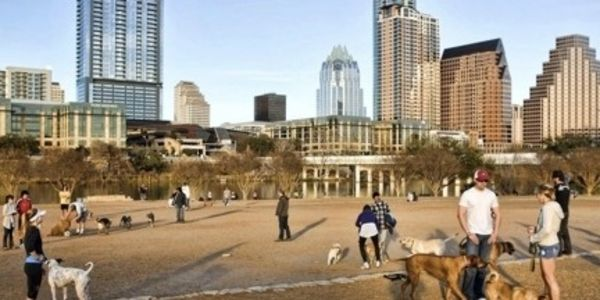 Keep Auditorium Shores Leash Free: for AUSTIN, TEXAS residents ONLY