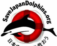 Stop the Dolphin Slaughter in Taiji, Japan