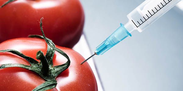 FDA: Close the 56-Year-Old Loophole Allowing Harmful Chemicals in Food!