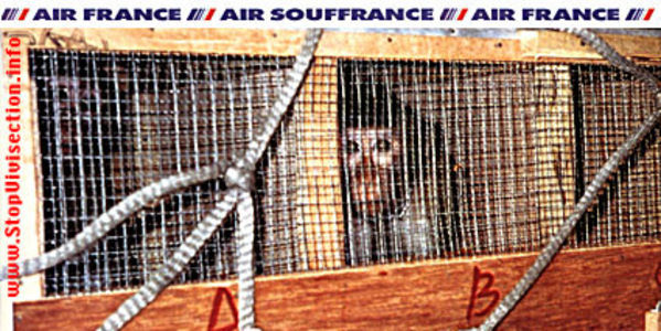 DEMAND AIR FRANCE STOP Shipping Live Monkeys to Labs