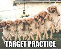 DOGS ARE NOT FOR TARGET PRACTICE!!