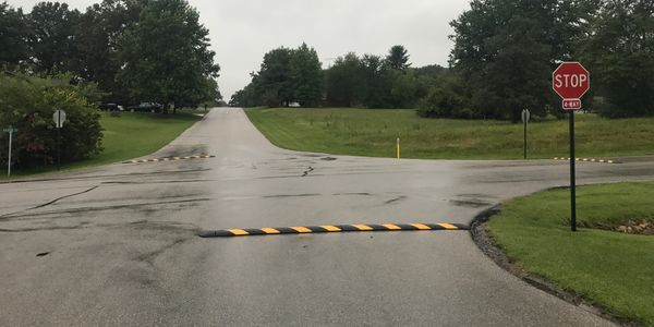remove speed bumps in christmas lake village