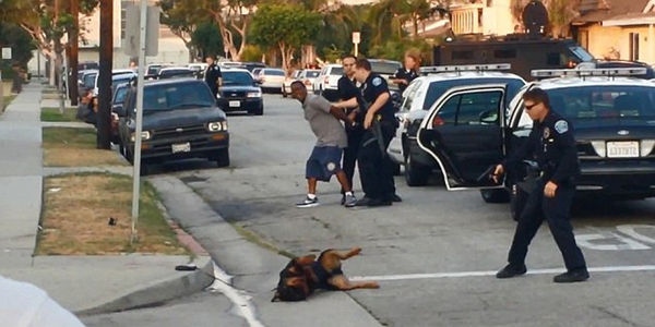 Justice for Max the Dog - Shot by Police in Hawthorne, CA