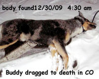 Buddy, dragged to death Dec. 30, 2009