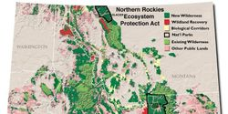 Protect 24 million acres of Northern Rockies Wildlands