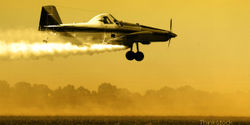 EPA, Don't Let Texas Spray Highly-Toxic Herbicide (Propazine)!