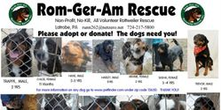 Save ROM-GER-AM ROTTWEILER RESCUE