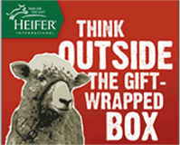 Think Outside the Gift-wrapped Box