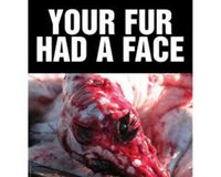 Stop The Fur Trade Industry In Greece.