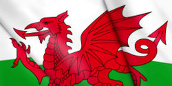 Wales - Stay Strong on Sustainability