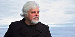 Free Captain Captain Paul Watson of Bogus charges from Costa Rica and Japan