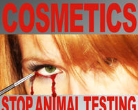 Stop Animal Testing for Cosmetics