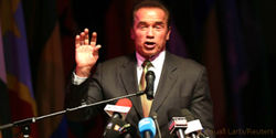 Schwarzenegger: Explain Your Investments in Illegal Logging and Rainforest Destruction!