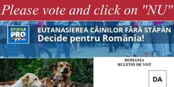 SHOW Romania that killing innocent dogs is NOT okay