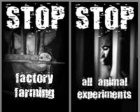 Stop factory farming ! Stop all animal experiments !