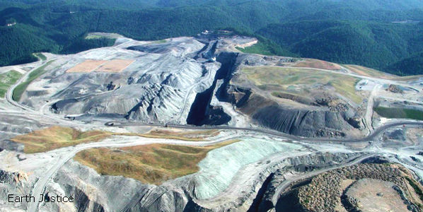 Tell the US to Stop Leasing Mining Rights to Private Companies