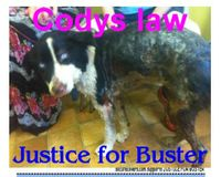 Codys Law *** Justice for Buster