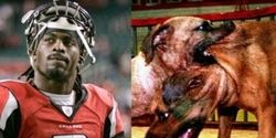 "Retract Michael Vick's BET ""Sportsman of the Year"" Award"
