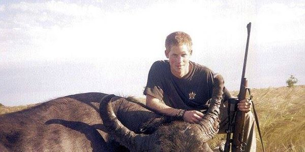 prince harry stop killing animals in wild!!