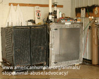 Stop Gassing Shelter Animals!