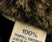 Harrods: Stop selling fur!