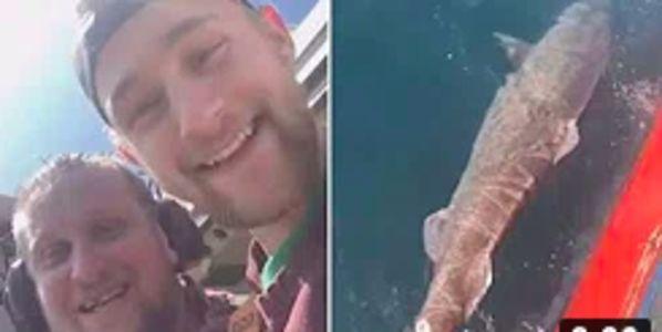 Men laughing at bleeding shark sinking