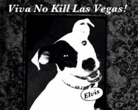Call for The Animal Foundation to Follow the No Kill Model