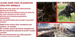 CLOSE ZOOS THAT SLAUGHTER HEALTHY ANIMALS INCLUDING COPENHAGEN AND TIERPARK DAHIHOL ZOOS