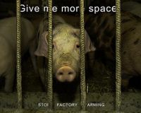 End Factory Farming!