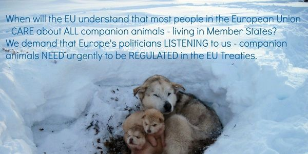 EU citizens suffer from mental disorders, due to witnessing animal cruelty.