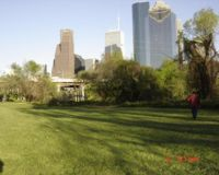 Bring More and Better Disc Golf Courses to Houston